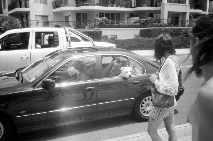 Wollongong 2012.
